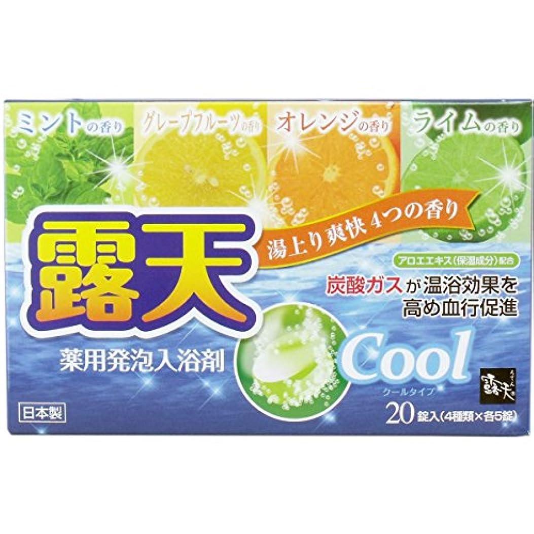 醸造所賞スクラップ薬用発砲入浴剤 露天 クールタイプアソート 20錠(4種×各5個)入
