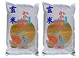 福島県産 玄米 石抜き処理済 チヨニシキ 10kg(5kg×2袋) 平成30年産