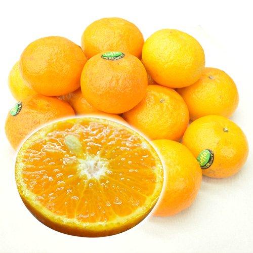 イスラエル産 オアオレンジ(オラオレンジ) 2.5kg みかんのように手で皮がむけます