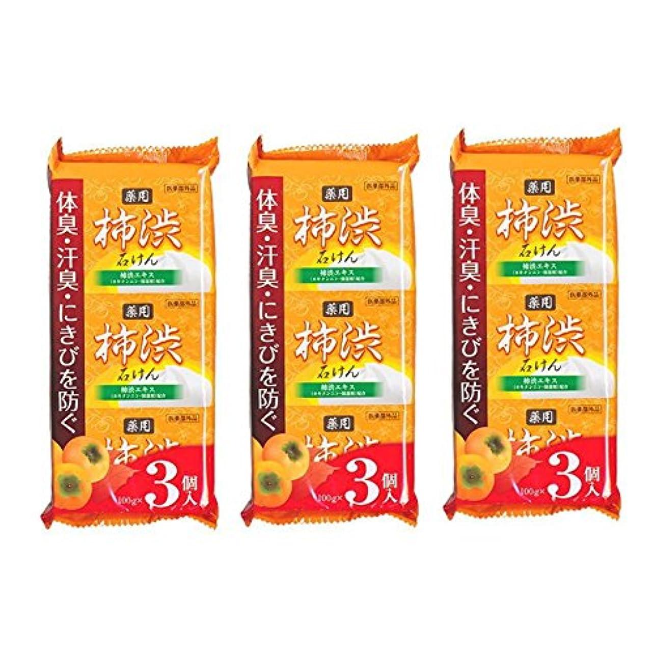 のど有益叙情的な柿渋石鹸 100g×9個セット(3個入り×3袋) 柿渋エキス カキタンニン?保湿剤配合