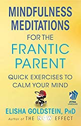 Mindfulness Meditations for the Frantic Parent: The Now Effect (English Edition)