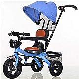 LICCC 子供用三輪車自転車1-5歳の自転車自転車トロリーFour Seasons Universal、5色オプション (Color : 2)