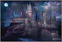"""Harry Potter–映画ポスタープリント(Hogwarts by Night) (Size : 24"""" x 36"""") Brushed Champagne Aluminum Frame - 36"""" x 24"""""""