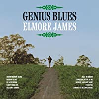 Genius Blues [12 inch Analog]