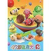 47都道府犬R [DVD]