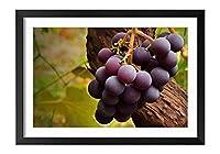 木製の枠 ズックの印刷する絵画 家の壁の装飾画 ポスター (35x50cm) 紫色の熟したブドウ