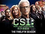 CSI:科学捜査班 シーズン 12 (字幕版)