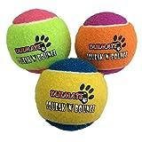 犬用テニスボール 犬 噛むおもちゃ 知育玩具 音の出るおもちゃ 3個入 (グループ1)