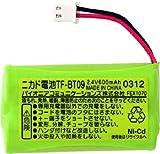 Pioneer 子機用充電池 TF-BT09