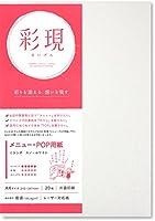 PCM竹尾 プリンタ用紙 彩現 メニュー・POP用 A4 ミランダ スノーホワイト 1742094
