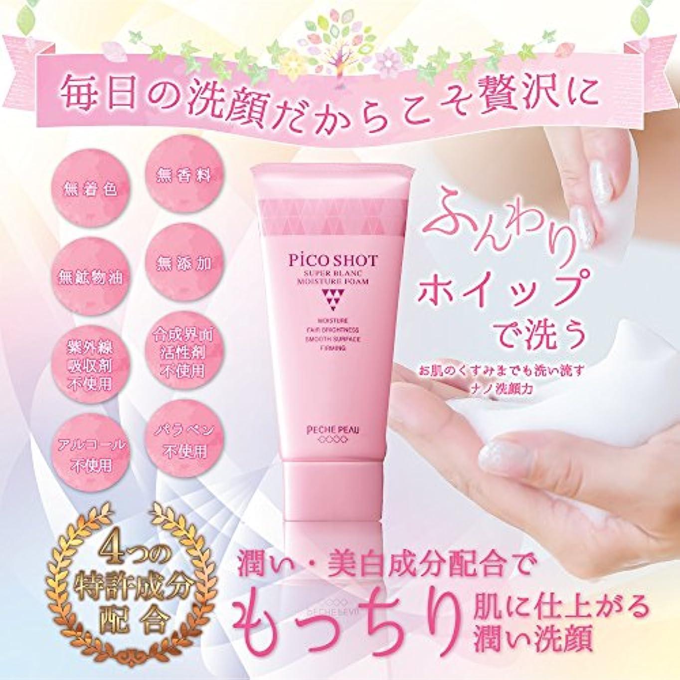 王族タンパク質ピンチナノ洗顔フォーム
