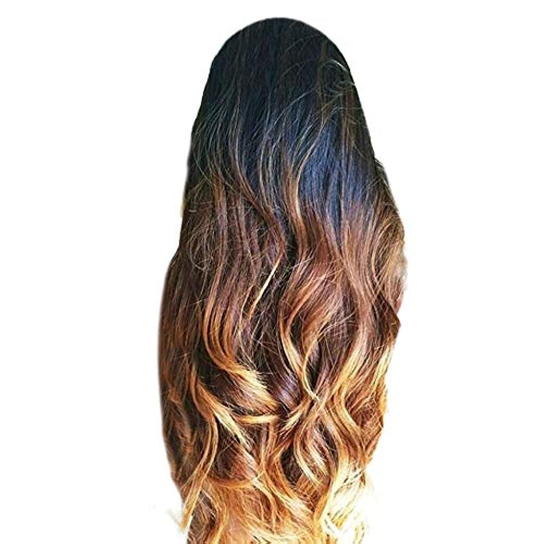 膨らみ体現する散髪女性の茶色のグラデーションロングカーリーウィッグファッションかつら