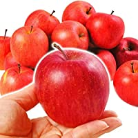 国華園 青森産 ちびふじ 10kg1箱 りんご