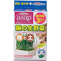 キャティーマン (CattyMan) 猫の生野菜種と土