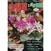 山野草とミニ盆栽 2007年 01月号 [雑誌]