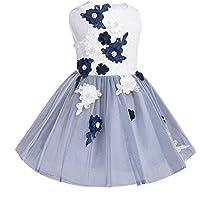 TiaoBug Girl Sleeveless Lacework Embroidery Mesh Princess Pageant Dress