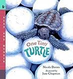 One Tiny Turtle (Read & Wonder)