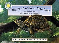 Box Turtle at Silver Pond Lane (Smithsonian's Backyard)