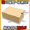 靴箱 N式タイプ NO4(320×245×120) クラフト 10枚セット (シューズボックス ダンボール 段ボール 靴収納ボックス 1足用)