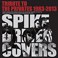 TORIBUTE TO THE PRIVATES 1983-2013~SPIKE DRIVER COVERS