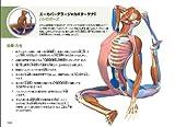 yogaアナトミー アーサナ編 画像