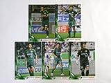 Jカード2013/2nd 【松本山雅FC】 レギュラーコンプ全5種 ≪オフィシャルトレーディングカード≫