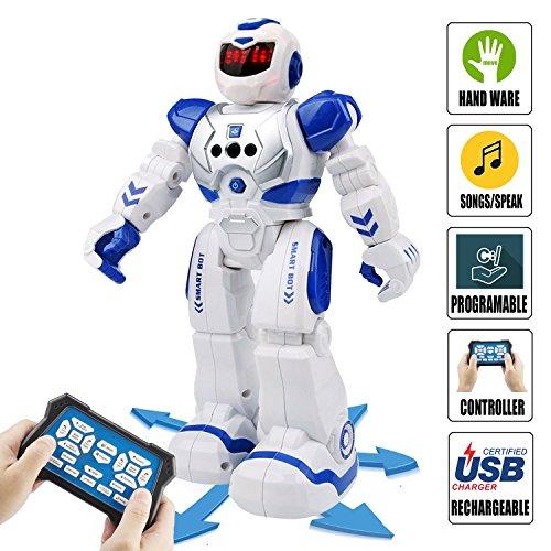 ROKKES 人型ロボット インテリジェン プログラム可能 歩く ジェスチャ制御 手振り制御 多機能ロボット ダンス ソングなど