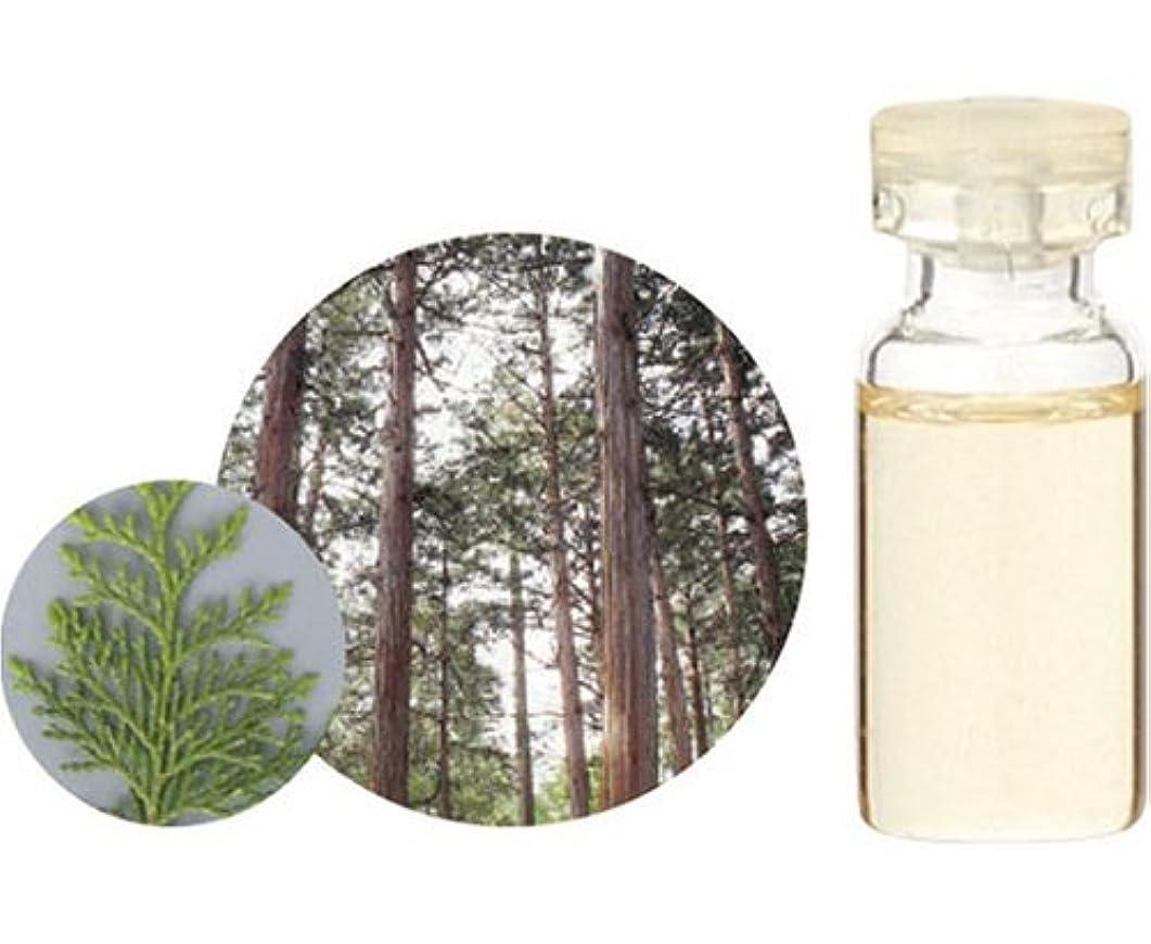 戦う代表する延期する生活の木 エッセンシャルオイル ヒノキ 10ml