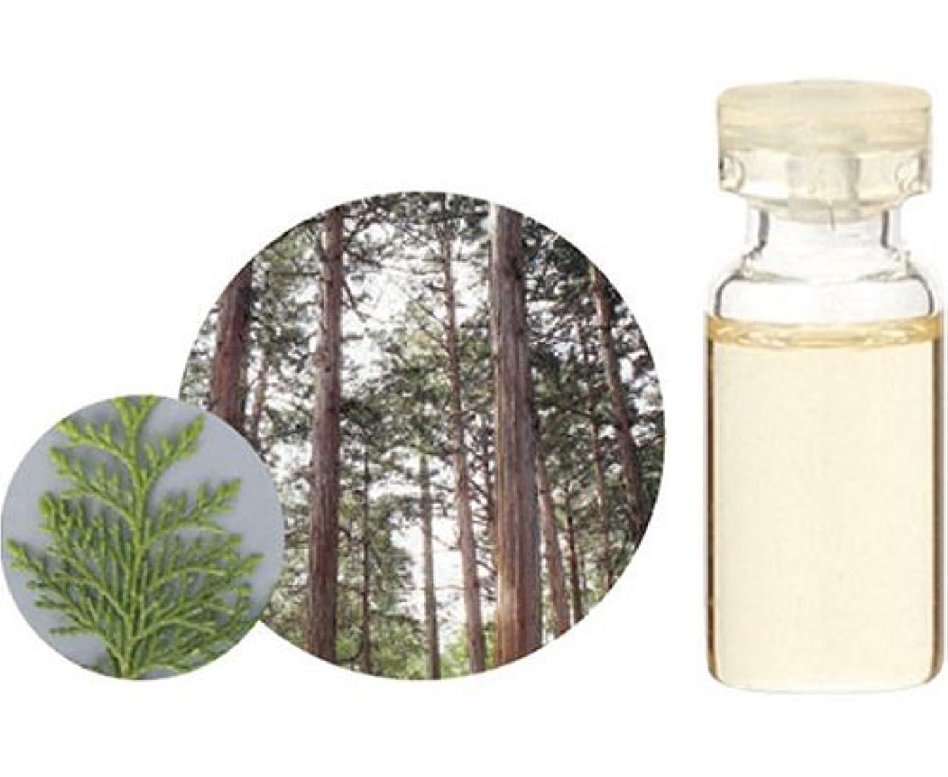処理する死んでいるデッキ生活の木 エッセンシャルオイル ヒノキ 10ml