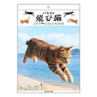 アートプリントジャパン 2019年 飛び猫 カレンダー vol.039 1000100976