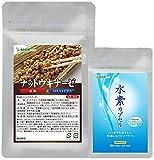 ナットウキナーゼ DHA & EPA 紅麹 入り 約3ケ月分 + 水素 カプセル 沖縄県産サンゴカルシウムパウダー使用 約1ケ月分