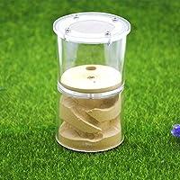 Yiteng 蟻用飼育ケース アリ飼育キット アリの巣観察キット 石膏製巣箱 爬虫類飼育ケース アリ飼育セット アリ城 円形