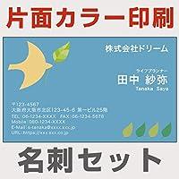 名刺 印刷 100枚 片面 カラー 文字のみ katamoji-03