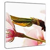 桜のファブリックボード アベンジャーズ インテリア アート pho-0078