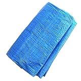 熱田資材 ウイングエース(WING ACE) ブルーシート 薄手タイプPシー ト(軽量) 10m×10m 1枚入り BS-1010(P)