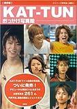 〔保存版〕KAT-TUN おっかけ写真館