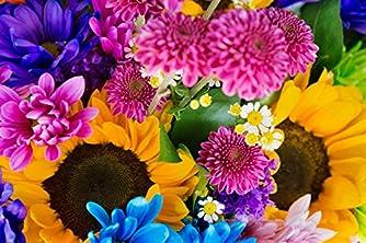 earthly flowers,heavenly colors ([テキスト])