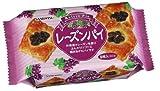 三立 レーズンパイ 9枚×6袋 / 三立製菓