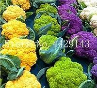 50個レアオーガニックRomanescoタワーブロッコリー盆栽、ローマのカリフラワーフラクタルヘッドBroccoflower野菜DIYホーム&ガーデン:1