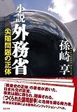 小説 外務省-尖閣問題の正体