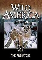 Wild America: The Predators