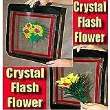クリスタルフラッシュフラワー / Crystal Flash Flower - Feather -- ステージマジック / Stage Magic /マジックトリック/魔法; 奇術; 魔力