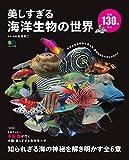 美しすぎる海洋生物の世界 (エイムック 4428)