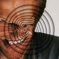 Richard D. James Album [解説 / 国内盤CD] 期間限定生産盤 (BRC556C)
