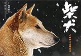 柴犬 よみがえる縄文犬