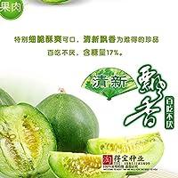 セールスラッシュセメントメロン盆栽日本の家族の庭フルーツを早く収穫する高い収量のシュガーの内容を収穫する10個