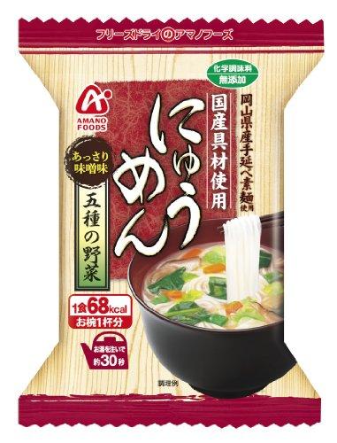 アマノフーズ フリーズドライ 無添加 にゅうめん 五種の野菜 16袋