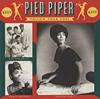 Pied Piper ~ Follow Your Soul