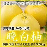熊本県産 JAやつしろ 晩白柚 ばんぺいゆ 赤秀 大玉