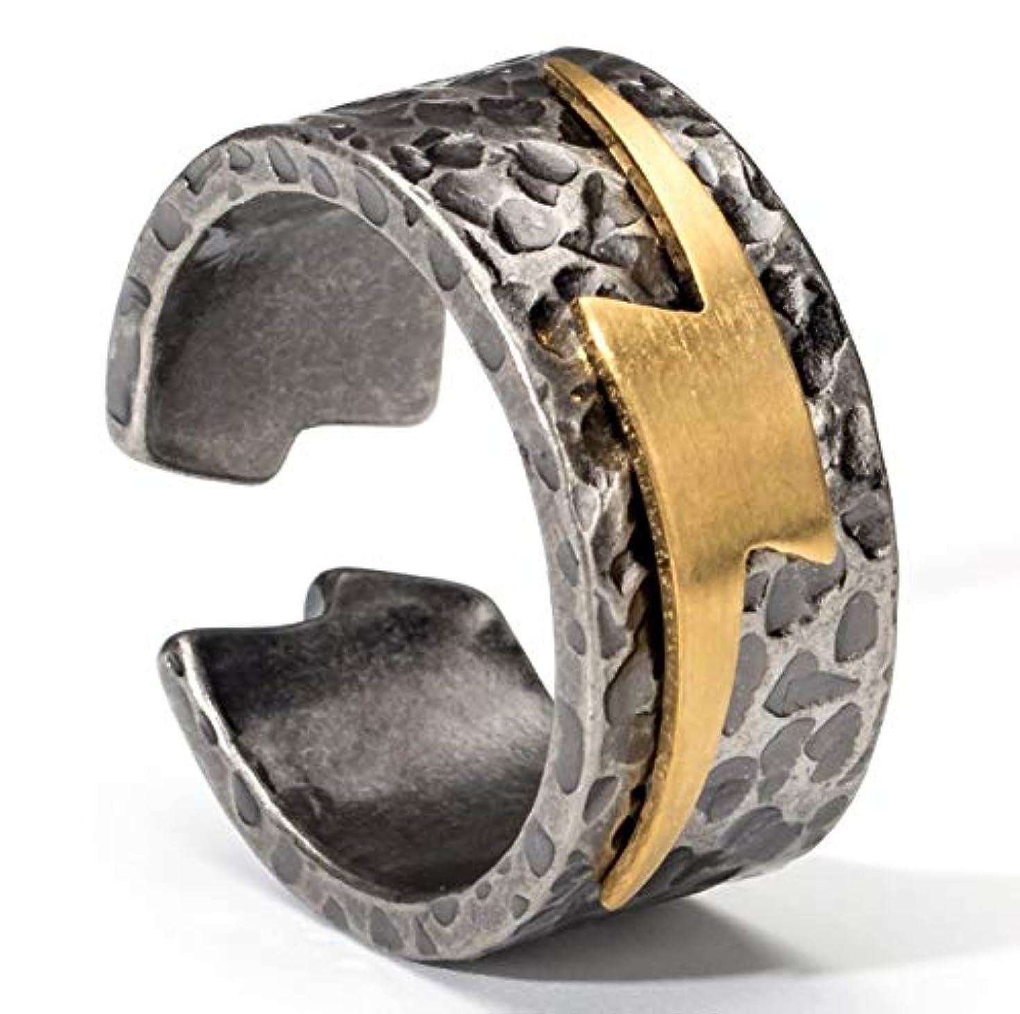 バッグガチョウ言い聞かせる男性と女性の銅指輪、ファッションパーソナリティ雷チタン鋼リング、カップルリングギフト (Design : 6#)